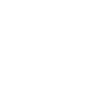 logo_sarz